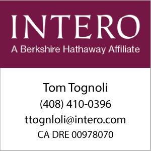 Tom Tognoli contact info